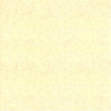 AE57-004 Oatmeal 3000yd