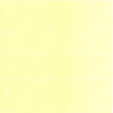 AE57-035 Sheer Yellow 3000yd