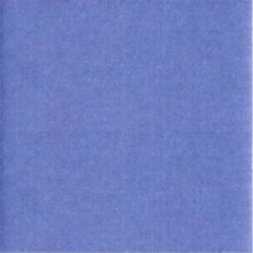 AE57-041 Blueberry 3000yd