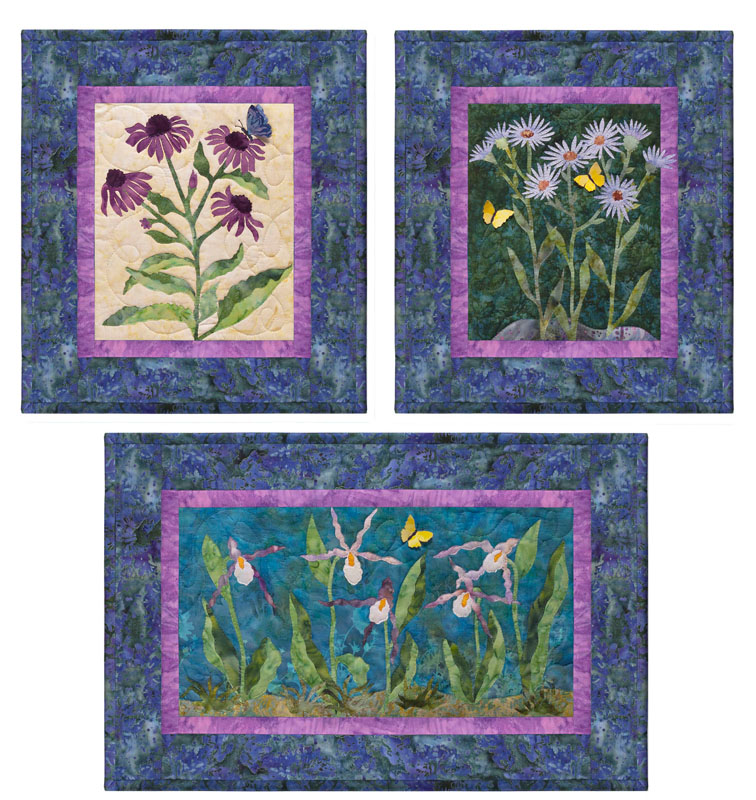 Purple Cone Flower-Asters-Mountain Lady Slipper