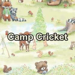 Camp Cricket