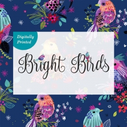 Bright Birds Collection