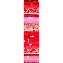 Rainbow Precut #0903 2.5in Strips x 40