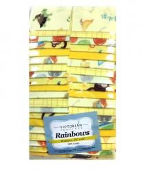 Rainbow Precut 2.5 inch #F0005 Flannel Sweetie