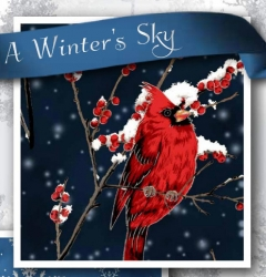 A Winters Sky