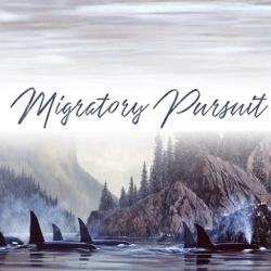 Migratory Pursuit